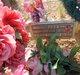 Rose B Gallegos