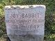 PVT Joy Charles Babbit Sr.