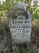 David S Jackson