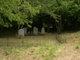 Ardcandrisk Graveyard