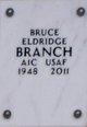 Profile photo:  Bruce Eldridge Branch
