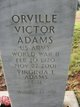 Profile photo:  Virginia Lee <I>Scott</I> Adams