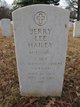 SSGT Jerry Lee Hailey