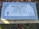 Daniel Trecy