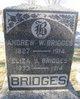 Andrew Watson Bridges