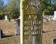 Profile photo:  Andrew Jackson McLellan