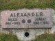 Millie Ellen <I>Ford</I> Alexander