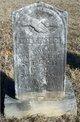 William Pullin Greenfield Steed