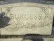 Mary Alice <I>Page</I> Burgess