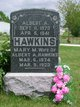 Profile photo:  Mary Matilda <I>Newton</I> Hawkins