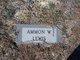 Ammon W Lewis