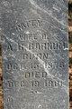 Rafey F. <I>Martindale</I> Barnum