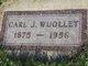 Carl John Wuollet