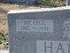 Joe Cecil Hanks