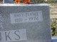 Mary Fannie <I>Henson</I> Hanks