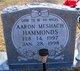 Profile photo:  Aaron Meshach Hammonds