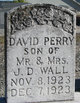 David Perry Wall