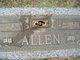 Bessie Kate <I>Godwin</I> Allen