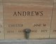Profile photo:  Chester Andrews