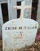 Jacob Henry Tiger