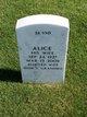 Profile photo:  Alice Gould