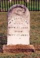 William A Reynolds