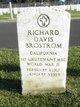 Profile photo:  Richard Davis Brostrom