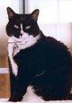 Profile photo:  Happy Craven