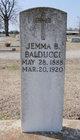 Profile photo:  Jemma B. Balducci