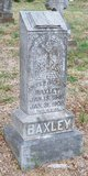 Profile photo:  Andrew Jackson Baxley