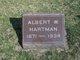 Profile photo:  Albert Wesley Hartman