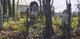 Collier-Goodwin Cemetery