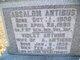 Absalom Antibus