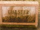 Chester H Shoebridge