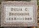 Profile photo:  Delia C. Brizendine
