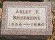 Profile photo:  Arley F. Brizendine