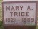 Mary Ann <I>Winstead</I> Trice