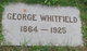 Profile photo:  George Whitfield