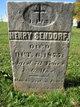 Henry Sendorf