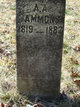 Profile photo:  A. A. Ammons