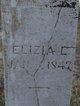 Eliza L <I>Bennett</I> Alexander
