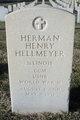Herman Henry Hellmeyer