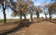 Cacheville Cemetery