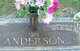 Catherine Theresa Anderson