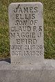 James Ellis Efird