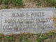 Jesse Edward White, Sr