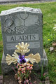 Profile photo:  Aladits