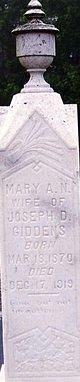 Mary Ann Nancy <I>Evans</I> Giddens