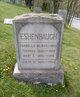 Mary E. Eshenbaugh