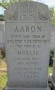 Mollie Aaron